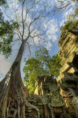 120103 Angkor 207_8_9.jpg