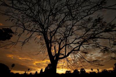 120103 Angkor 078.jpg