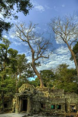 120103 Angkor 118_19_20.jpg